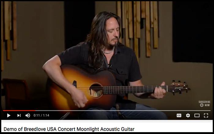 breedlove-usa-concert-moonlight-usa-youtube.png
